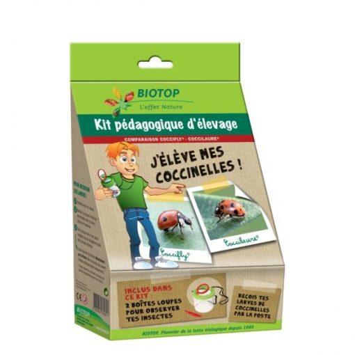 Kit Pédagogique d'Élevage Coccifly/Coccilaure - Biotop 1