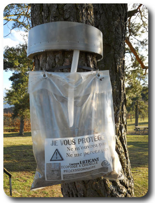 Ecopiège à chenille processionnaire ø55cm 1