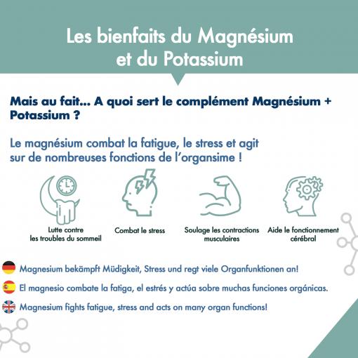 Magnésium + Potassium aRgalys 1