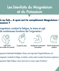 Magnésium + Potassium aRgalys 4